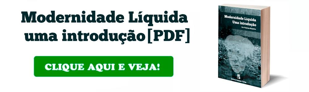 Livro Amor Liquido Pdf